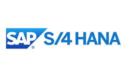 SAP S/4 HANA - Un nuevo concepto de suite
